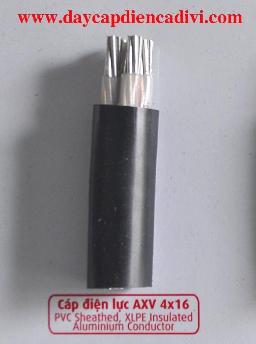 AXV 4x16cc - 0.6/1kV