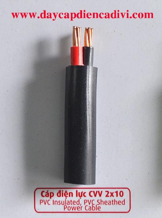 Cáp Điện Lực CVV 2x10mm2