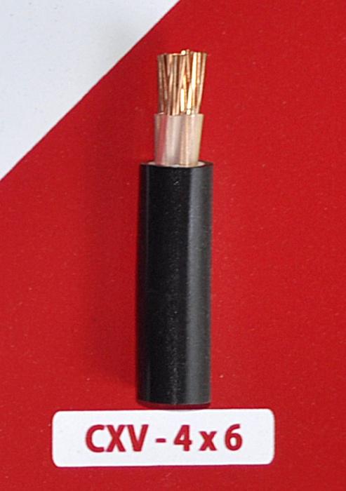 Cáp Nguồn CXV -4x6mm2 -0.6/1kV