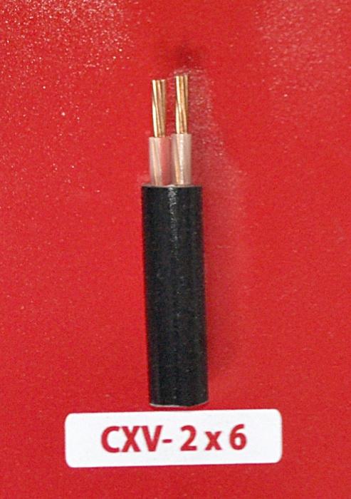 Cáp Nguồn CXV -2x6.0mm2 -0.6/1kV