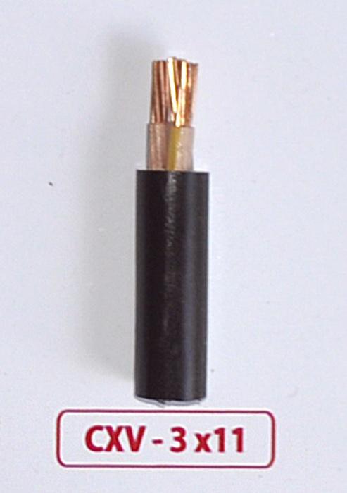 Cáp Nguồn CXV -3x11mm2 -0.6/1kV
