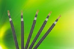 Cáp điện lực hạ thế 1- 4 lõi, lõi ruột đồng, cách điện XLPE , vỏ PVC giáp bảo vệ 2 tầng lớp băng kim loại CXV/DTA – 0,6/1 kV