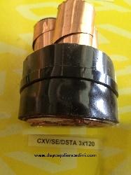 CXV/Se-DSTA 3x120 -12/20(24)kV