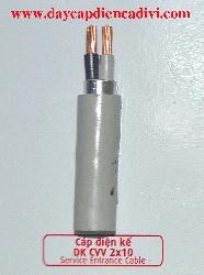 Cáp Điện Kế DK CVV 2x10mm2
