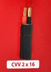 Cáp Nguồn CVV 2x16mm2-0.6/1kV