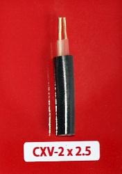 Cáp Nguồn CXV -2x2.5mm2 -0.6/1kV