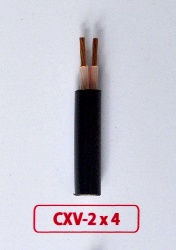 Cáp Nguồn CXV -2x4.0mm2 -0.6/1kV