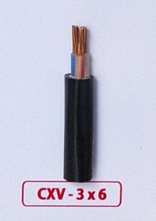 Cáp Nguồn CXV -3x6.0mm2 -0.6/1kV