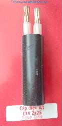 Cáp Nguồn CXV 2x25mm2-0.6/1kV