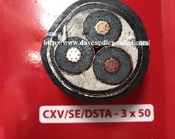 CXV/SE/DSTA 3x50-12/20(24)kV